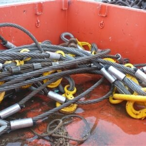 31.5 Tonne Lifting Hooks